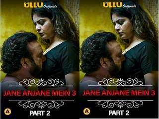 First On Net – Charmsukh – Jane Anjane Mein 3 ( Part-2 )